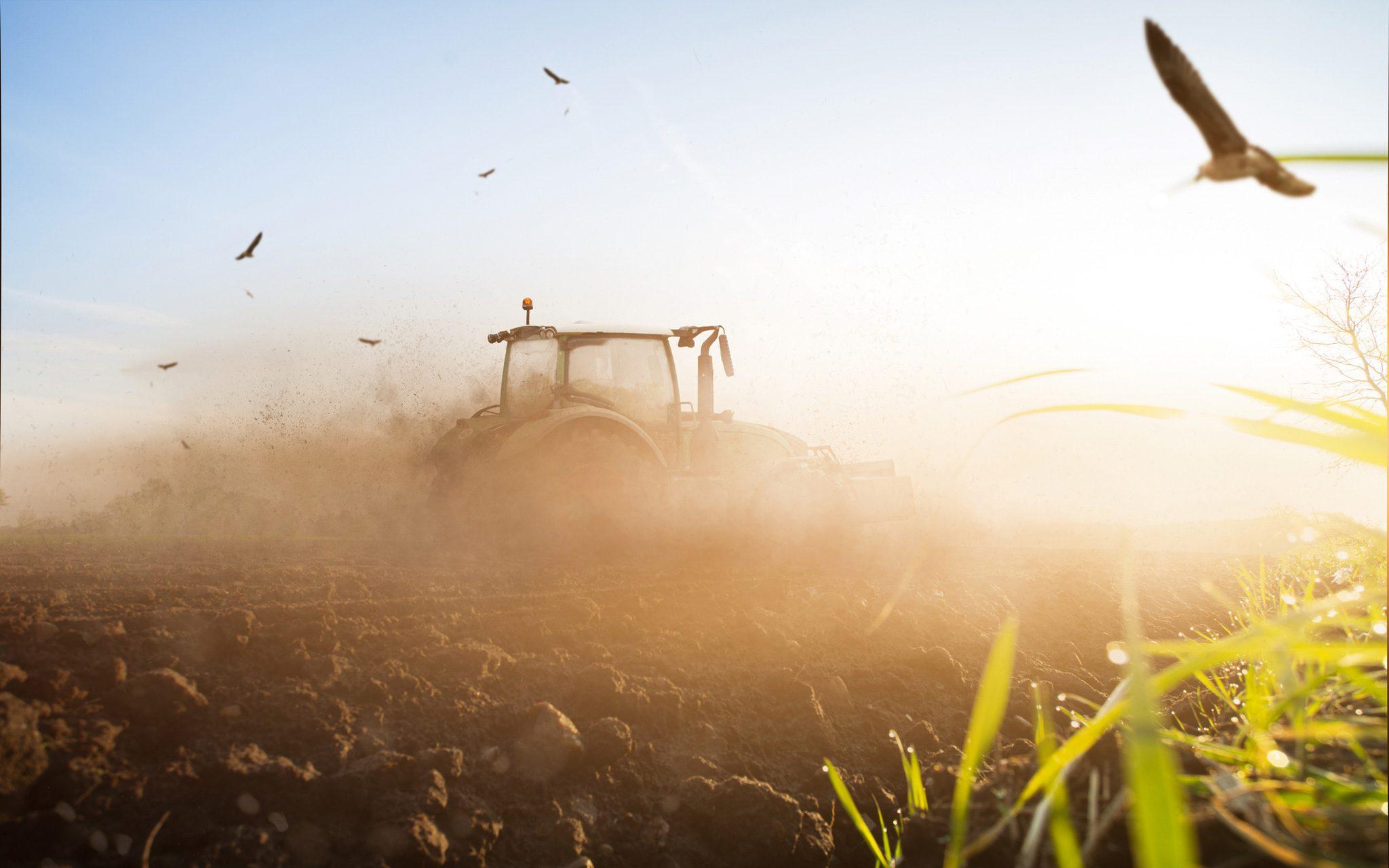 Traktor auf einem trockenen Feld